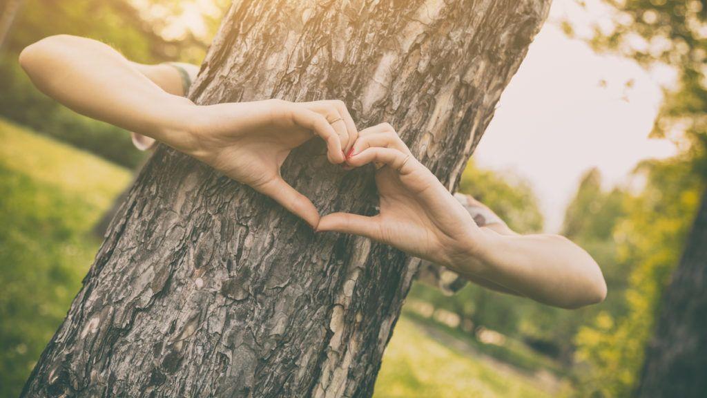 Fához ment feleségül és fel is akarja venni a fa nevét!
