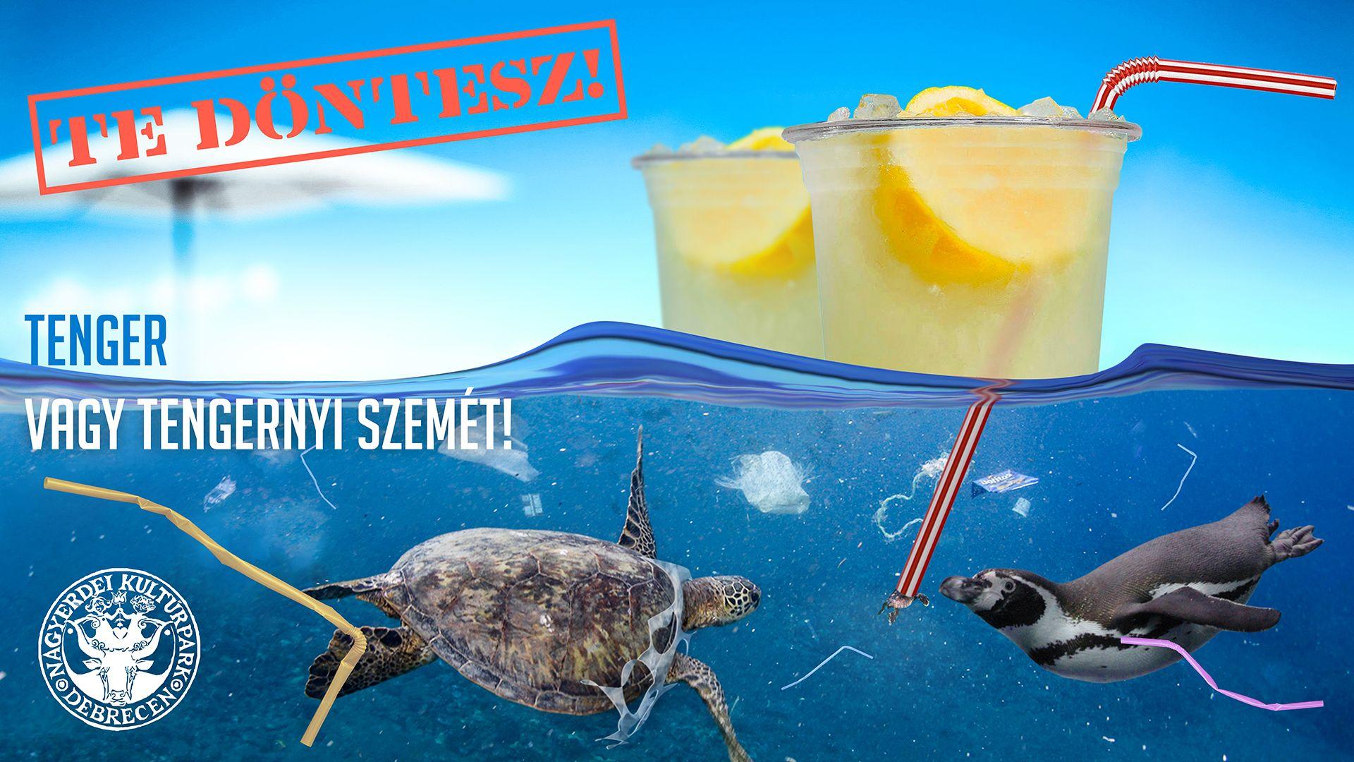 A Debreceni Állatkert és Vidámpark mától kitiltja az egyszer használatos műanyagokat!