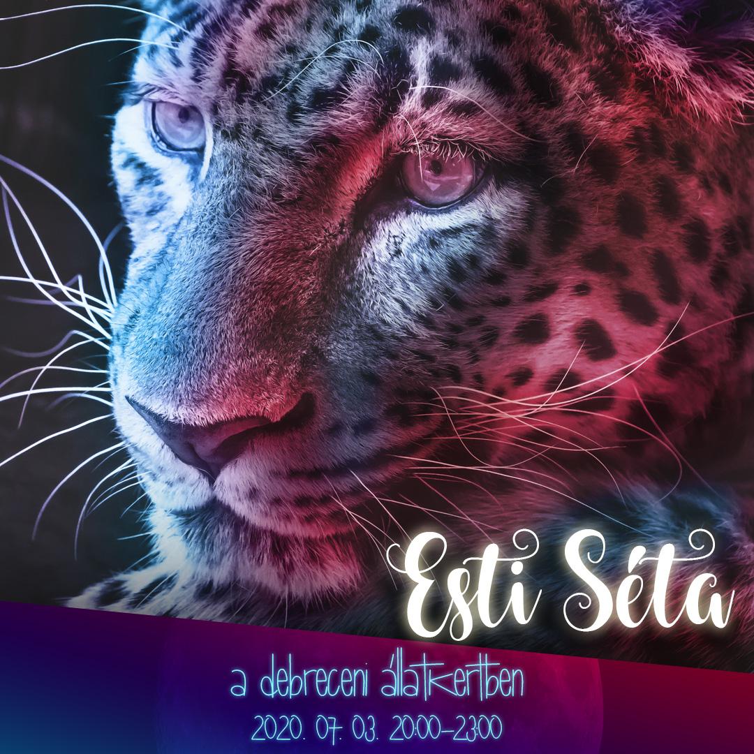 Júliusban folytatódnak az Esti séták a Debreceni Állatkertben!