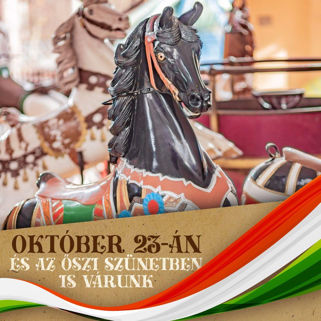 Az őszi szünetben is megannyi élményt kínál a Debreceni Állatkert és Vidámpark!