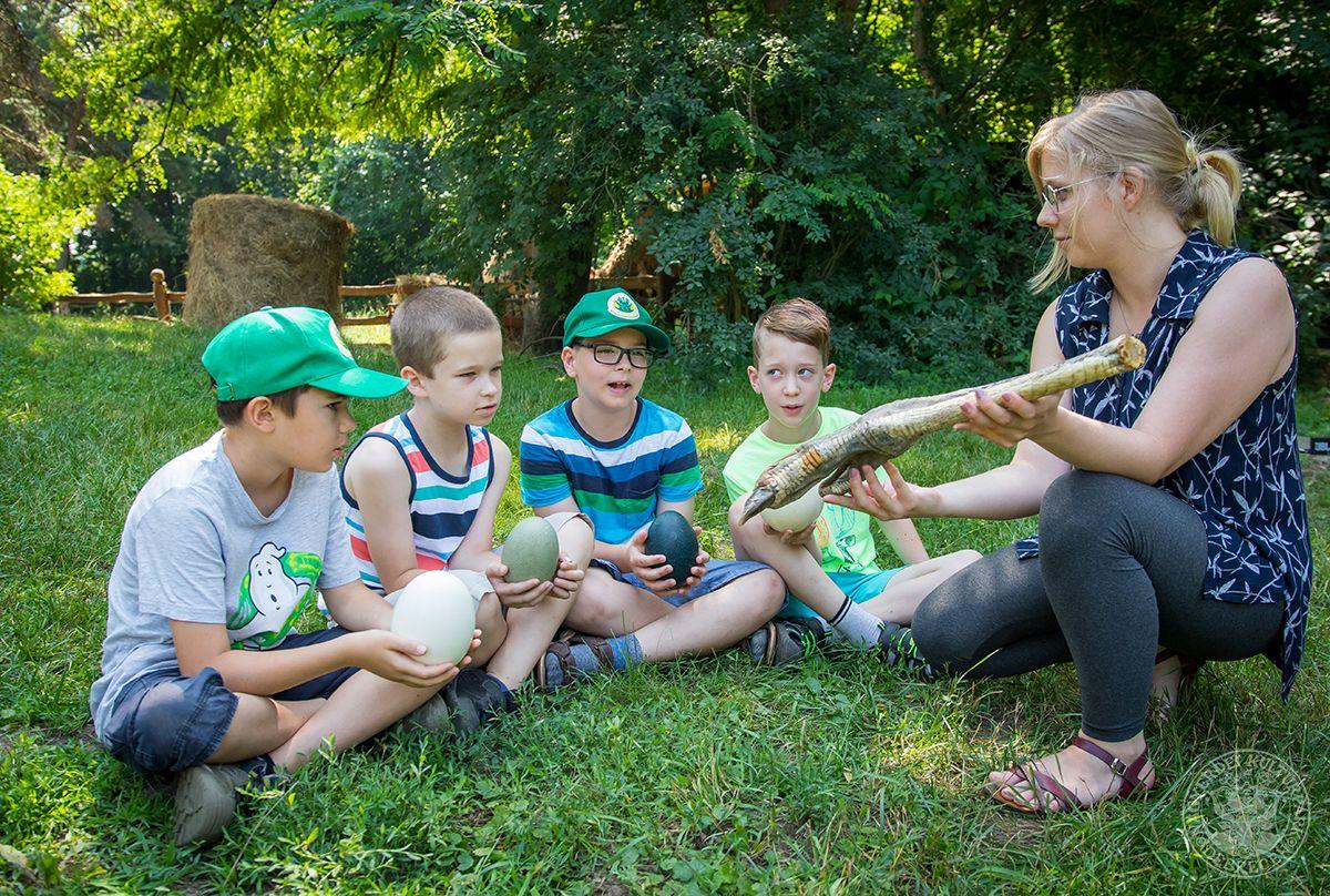 Nemzetközi önkéntesprogramhoz csatlakozott a Debreceni Állatkert és Vidámpark!