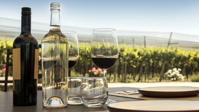 hárommilliós fizetésért csak bort kell inni – vállalnád?
