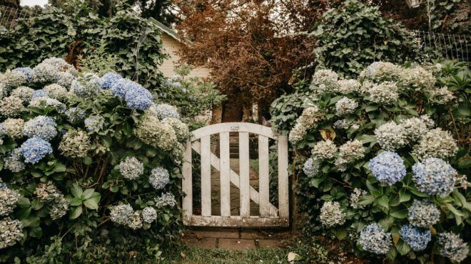 Fogakból készült 18. századi építményt talált egy férfi a kertjében. Illusztráció: Unsplash