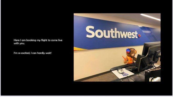 Egy kisfiú elvesztette mackóját a repülőn, a légitársaság csúcsszuper ötlettel állt elő - Fotó: Southwest Airlines