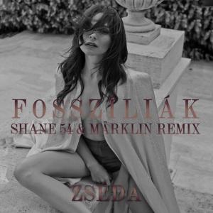 Zséda – Fosszíliák (Shane 54 & Märklin Remix)